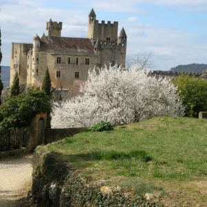 Springtime in Beynac, early March.